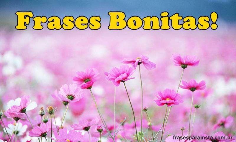 Frases Bonitas para Fotos 52