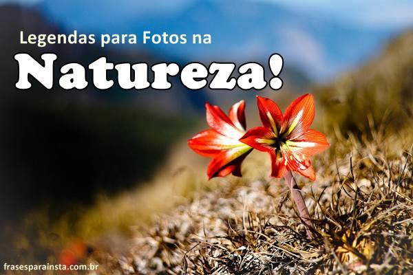 Legendas para Fotos na Natureza