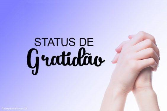 Status de Gratidão 9