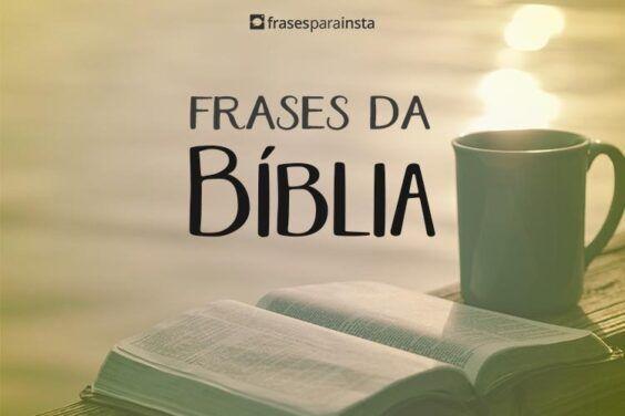 Frases da Biblia 14