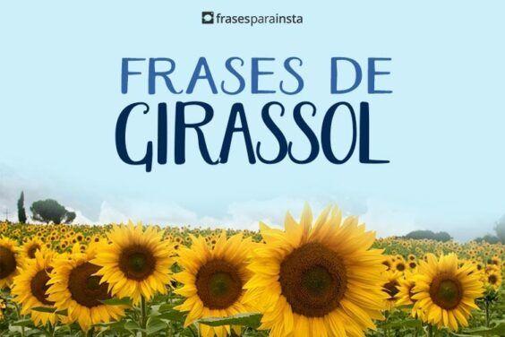 Frases de Girassol 47