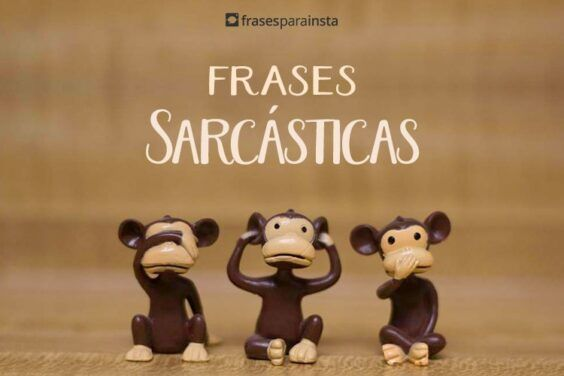 Frases Sarcásticas 5