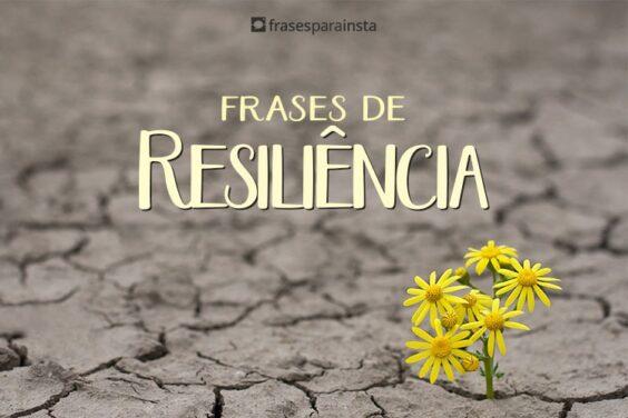 Frases de Resiliência 9