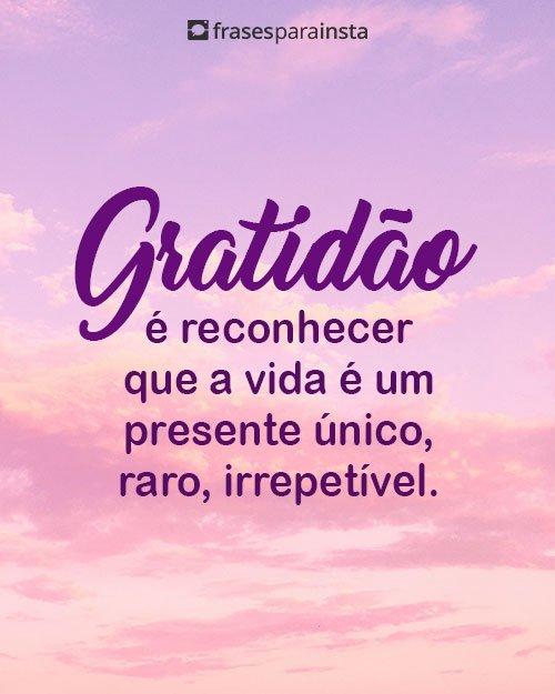 Status de Gratidão para Todos os Momentos