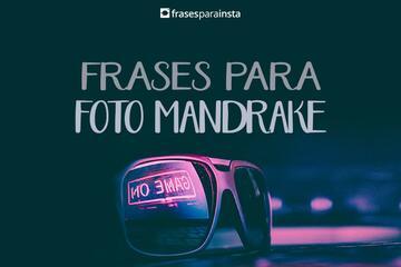 Frases para foto Mandrake